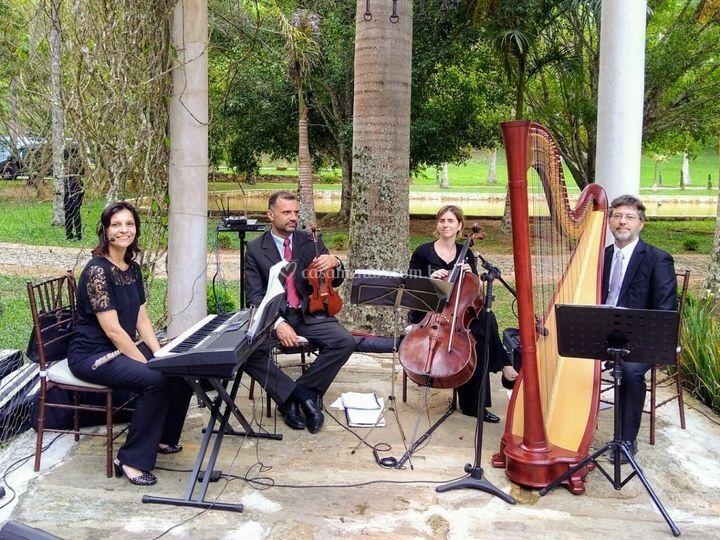 Casamento com harpa