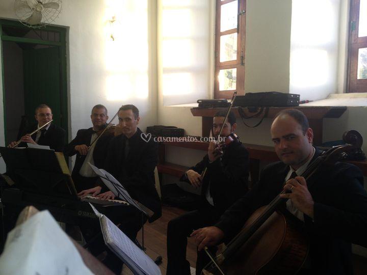 Violinos para seu casamento