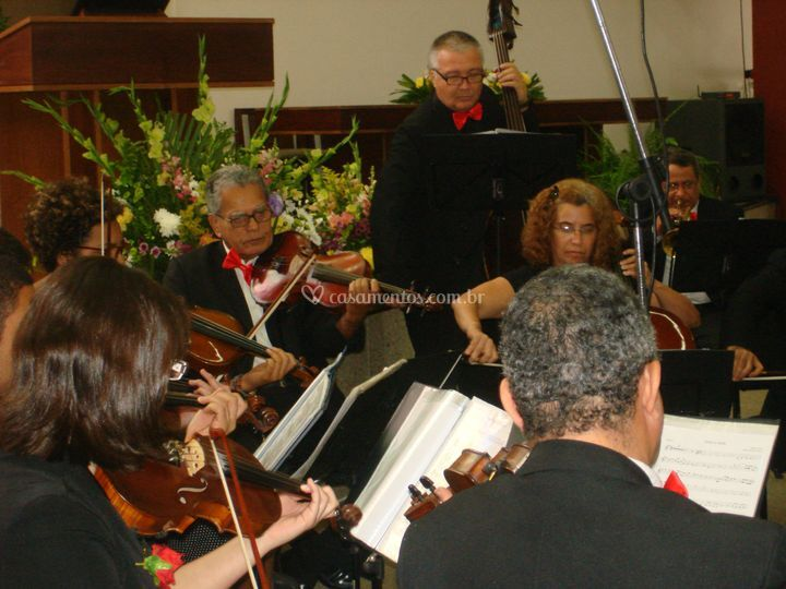 Orquestra com violinos