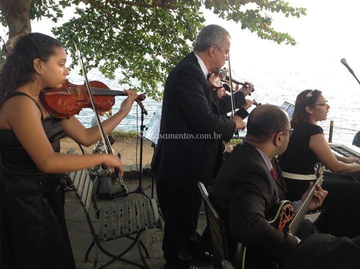Violinos fortaleza santa cruz