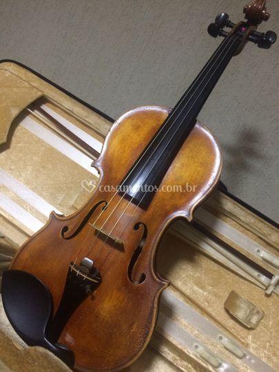 Solo - Violino