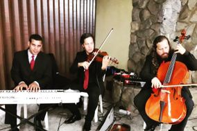 Lucas Oliveira Assessoria Musical