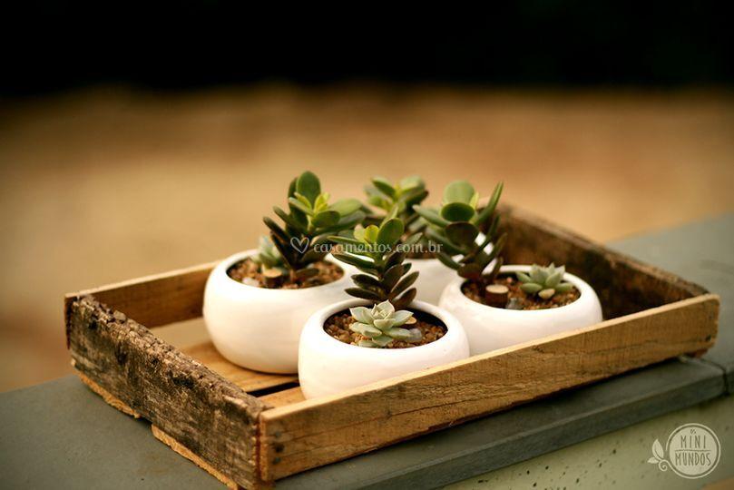 Mini cerâmicas
