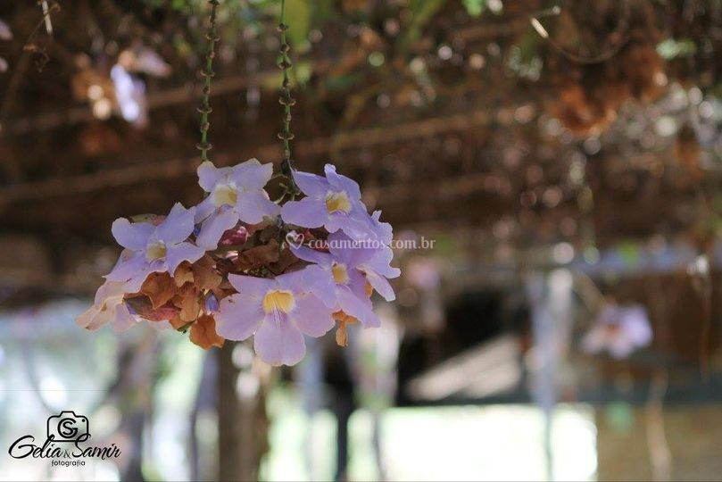 Flores do hotel