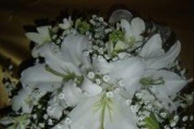 Floricultura Bem Me Quer