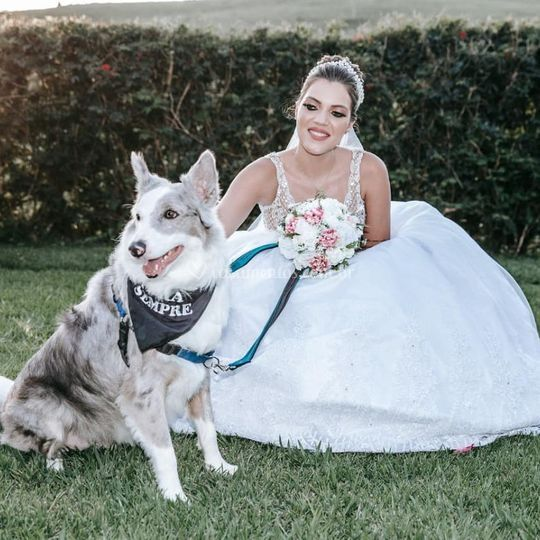 Dog Romeu com sua Dona