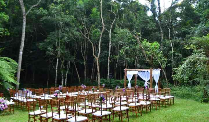 Bosque cadeiras tifany