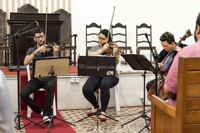Violino, Viola e Cello
