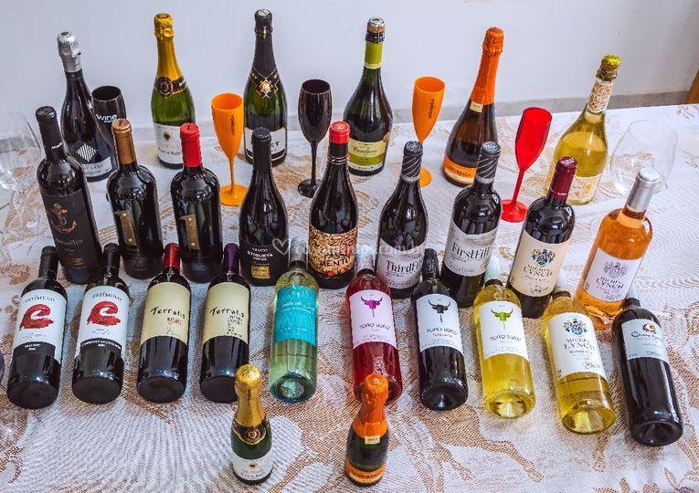 Todos vinhos