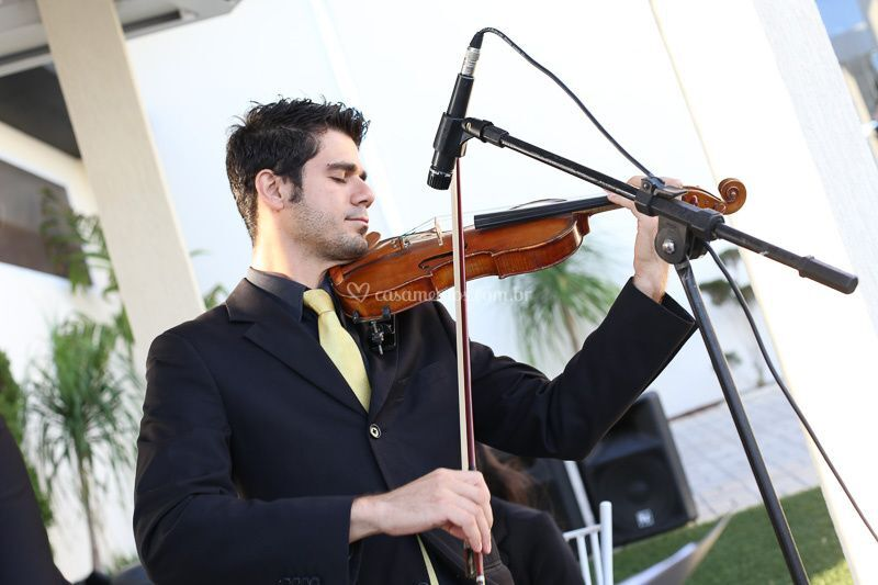 Violino um toque de classe