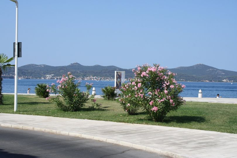 Zadar - Croácia