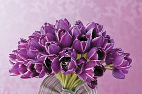 Per Amore Flores