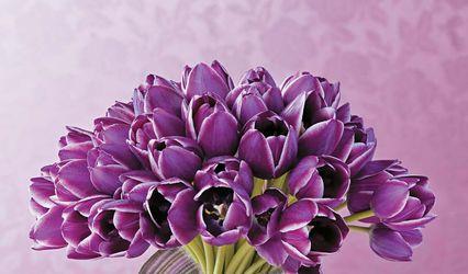 Per Amore Flores 1