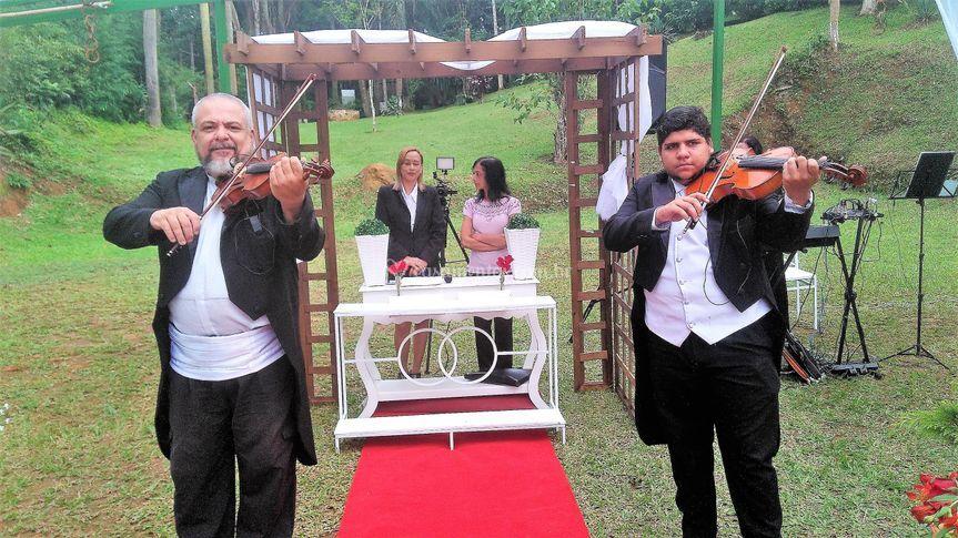 Violinistas no altar