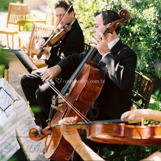 Quarteto de cordas ao ar livre