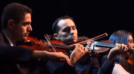 Excelentes músicos