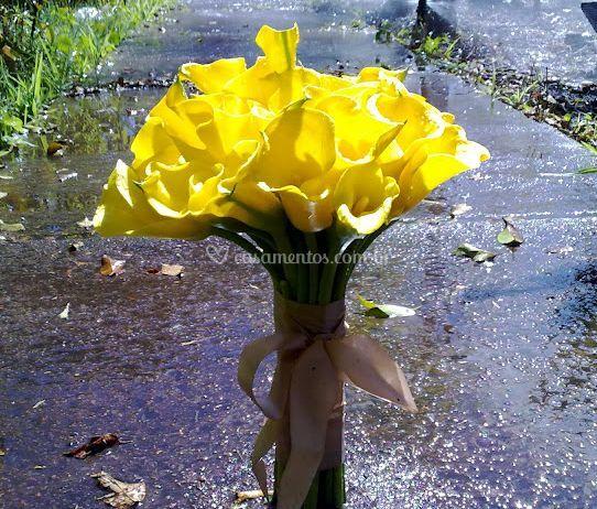 Bouquet de callas amarelo