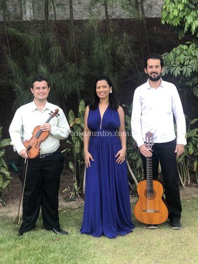 Voz, violao e violino