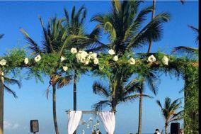 Tropicália Eventos e Cerimonial