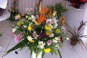A.M. Floricultura