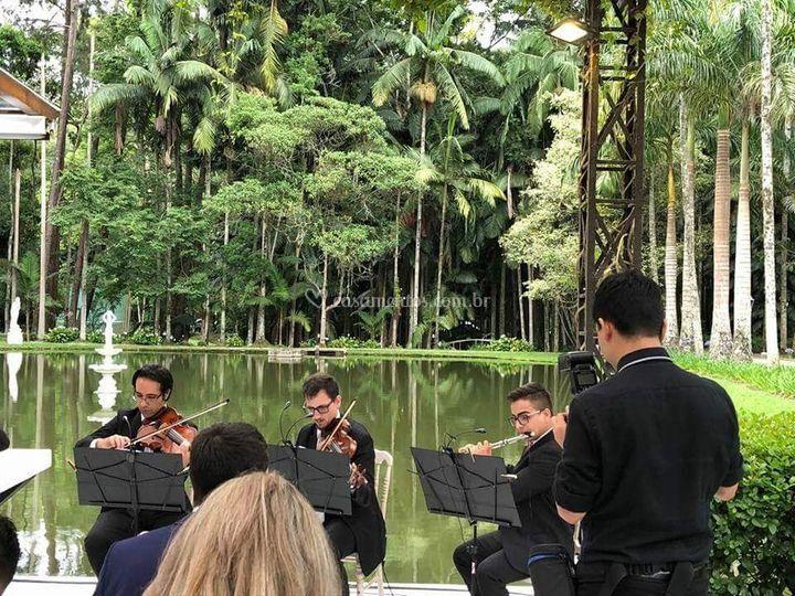 Orquestra na fazenda