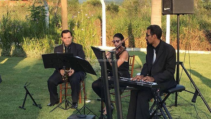 Musical Álamo
