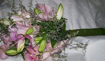 Floricultura Em Nome do Amor