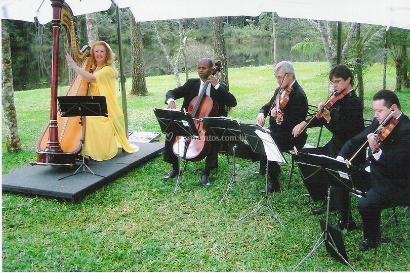 Quarteto de cordas e harpa