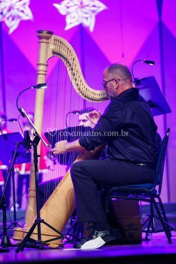 Harpista!