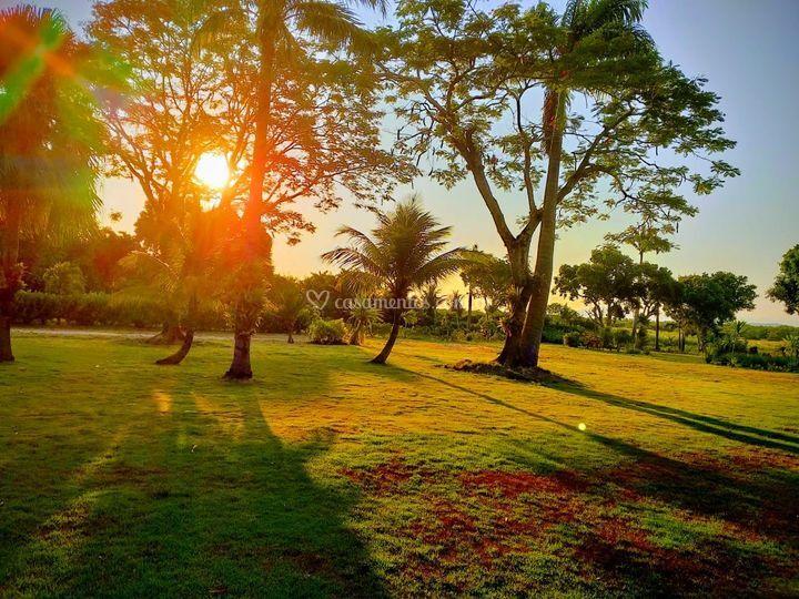 Pôr do sol encantador.