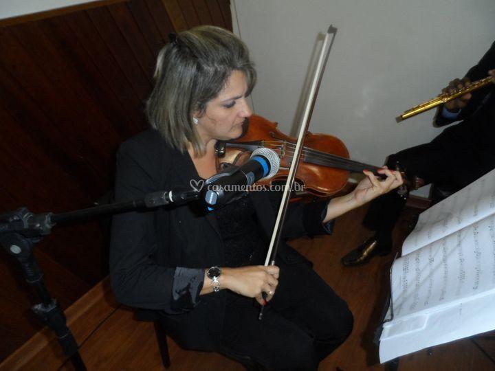 Solo de violino