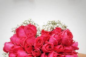 Floricultura Anália Franco
