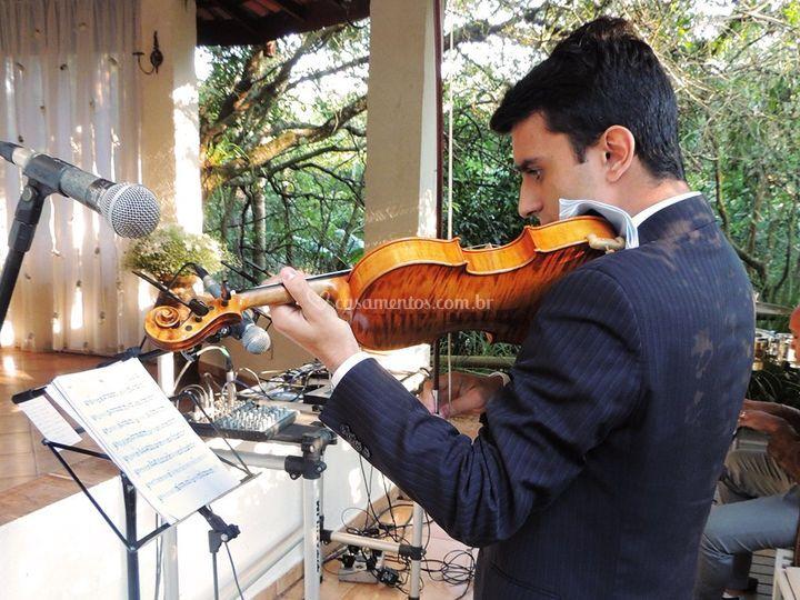 Violino em cerimonial