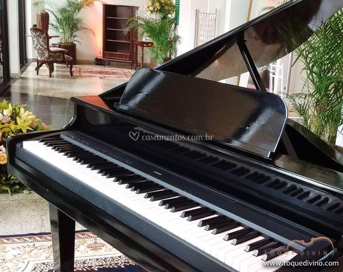 Que tal um piano de cauda?