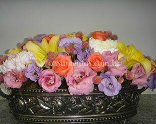 Diversidade de cores e flores