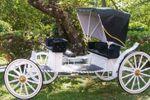 Carruagens para casamentos de Carruagens Godoy