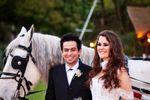 Aluguel de carruagens para noivos de Carruagens Godoy