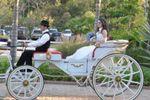 Aluguel de carruagens de Carruagens Godoy