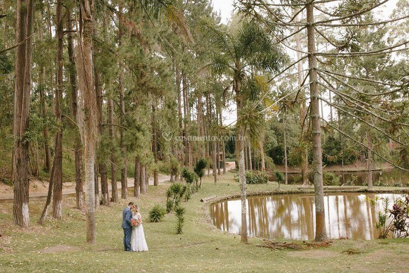 Campos lago