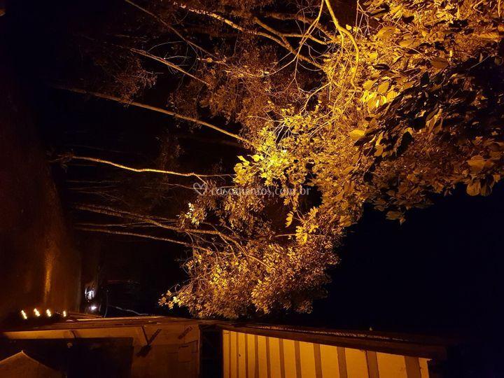 Iluminação externa floresta.