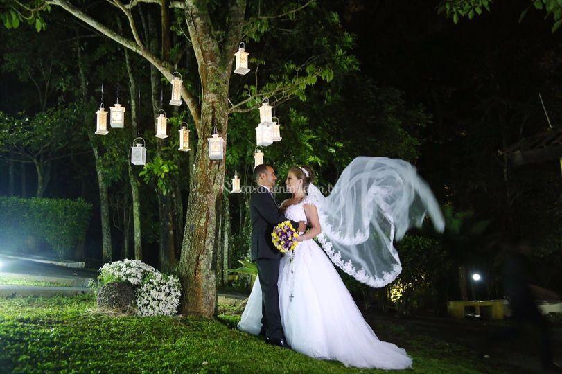 Árvore de lanterna