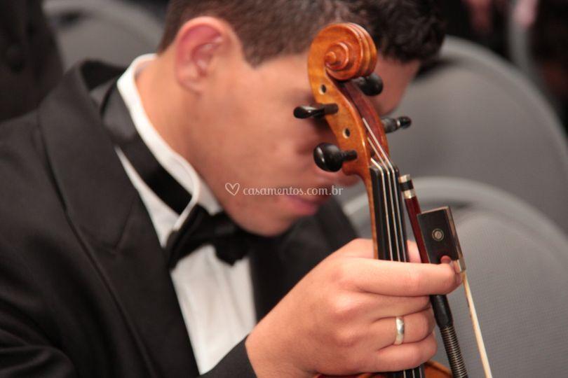 Violino para o jantar