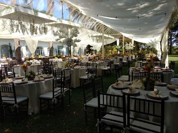 Tenda Capela Cristal Marfim