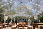 Tenda 10x20 transparente