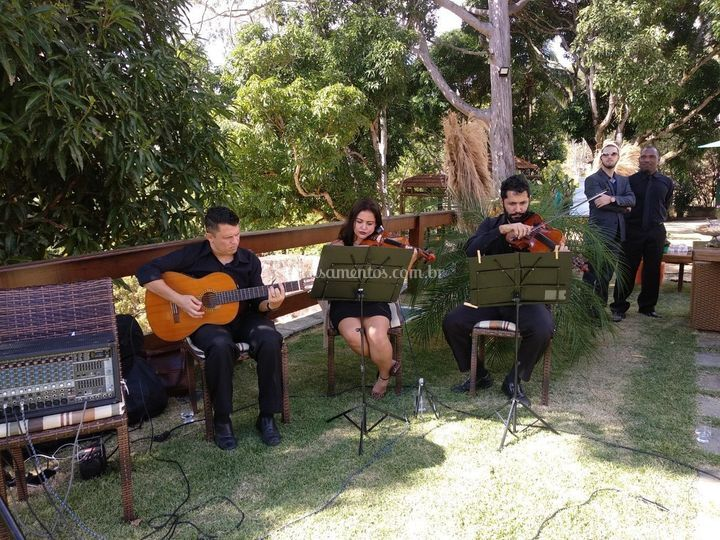 Violao e  Violinos.