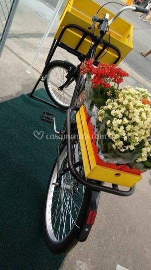 Bike Cargo Pequena