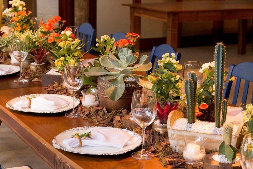 Mesa da Família - Planta Viva