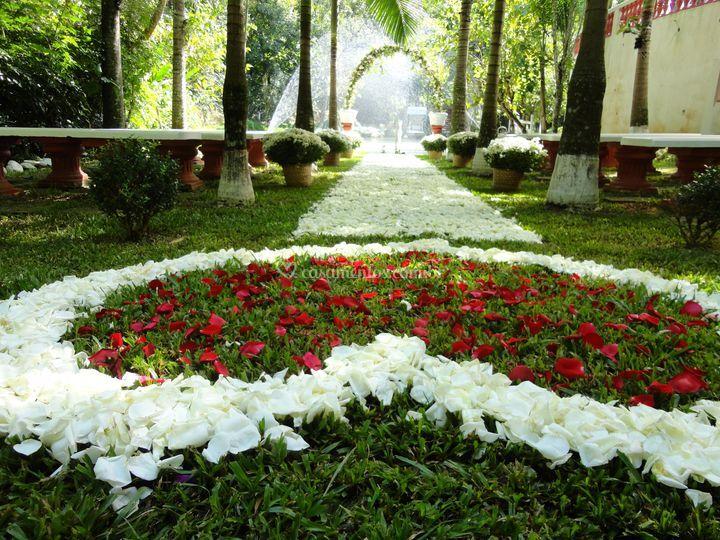área cerimonia