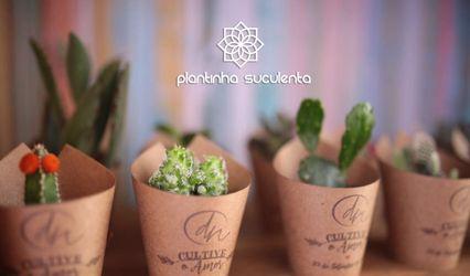 Plantinha Suculenta