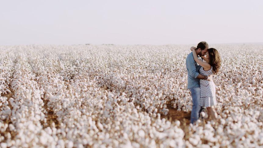 Ensaio em plantação de algodão
